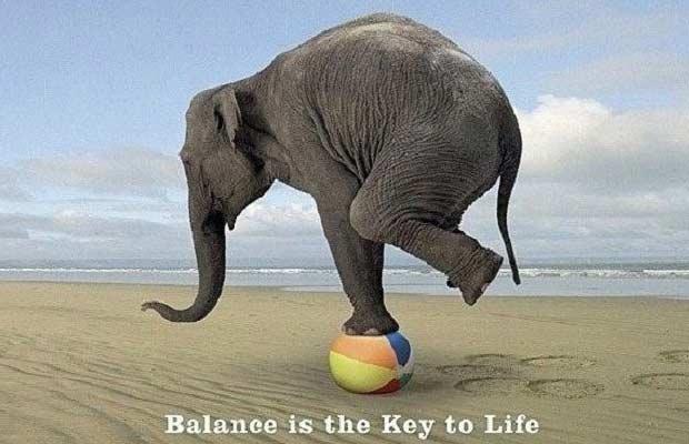 olifant balans